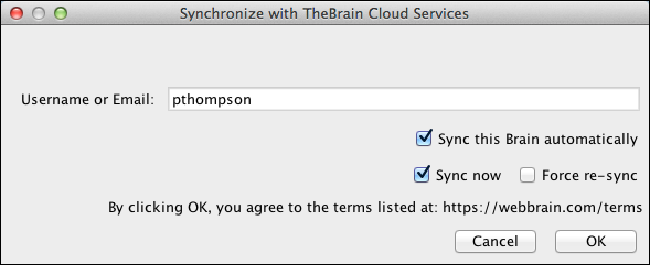 Synchronize Local Brain