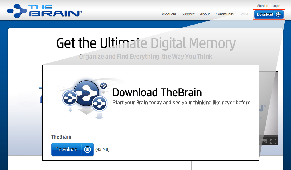 TheBrain Download
